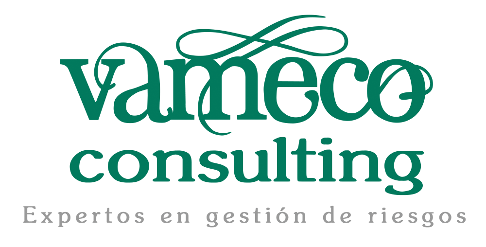 vameco-consulting